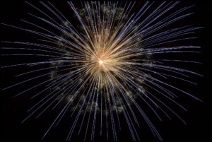 Fireworks Advice for Coalville Pets