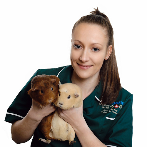 cockburn-veterinary-group-vet-in-coalville-staff-Laura-Critchley