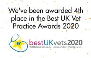 Cockburn Vets awarded 4th place in best uk vet practice awards